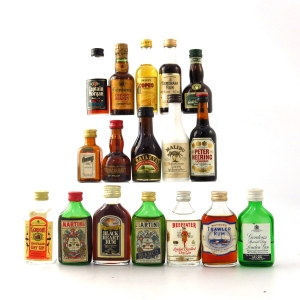 Miscellaneous Spirit & Liqueur Miniature Selection 17 x 5cl
